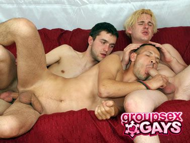Group Sex Gays torrent